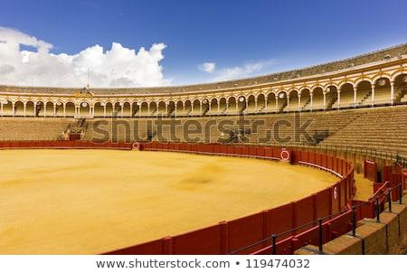verekedés · aréna · Spanyolország · város · tájkép · utazás - stock fotó © lunamarina