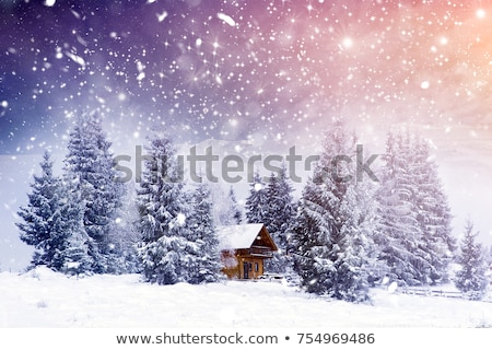 cottage in snow Stock photo © kovacevic