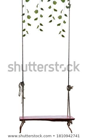Rope Swing Isolated Stock photo © albund
