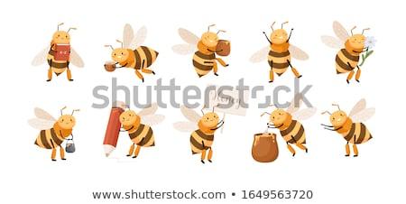 Insecten jar dode dier niemand wildlife Stockfoto © IS2