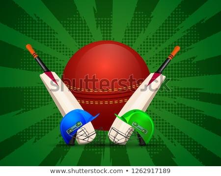 zöld · krikett · játékos · kész · labda · tipográfia - stock fotó © Vicasso