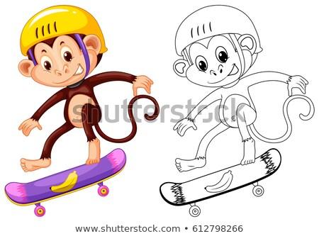 животного обезьяны скейтбординга иллюстрация фон Сток-фото © colematt
