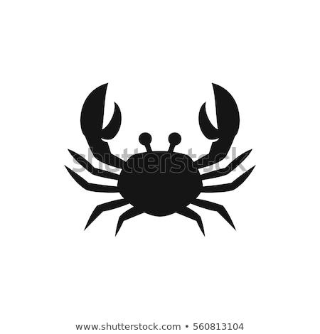 crab silhouette isolated vector illustration stock photo © jeff_hobrath