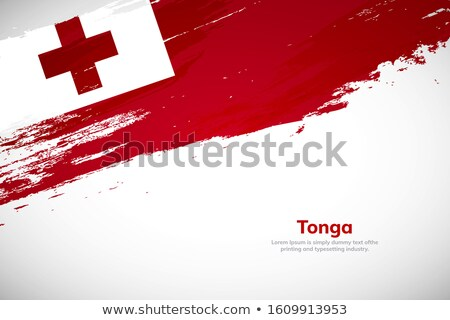 царство Тонга флаг высушите земле землю Сток-фото © grafvision