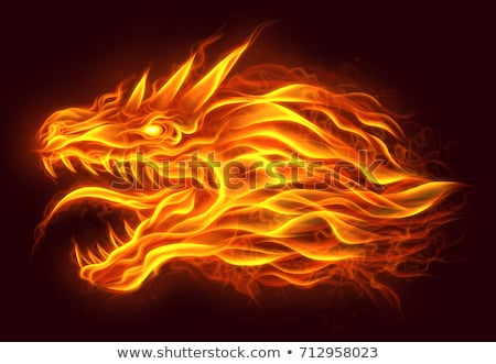 dragon and flames stock photo © colematt
