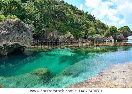 Rock zwembad paradijs antenne landschap mooie Stockfoto © lovleah