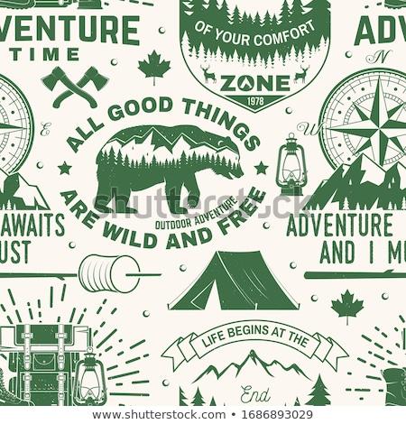 Camping montanha floresta Foto stock © JeksonGraphics
