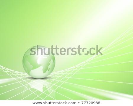 green world globe in rays and net Stock photo © marinini