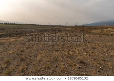 Unfruchtbar Bereich Landschaft grünen blau Stock foto © elxeneize