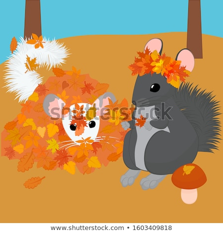 two chinchillas walk in the autumn forest. vector illustration Stock photo © Hipatia