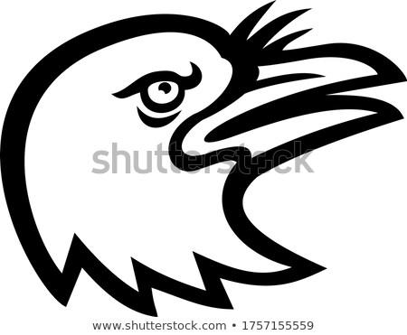 American Crow Head Side Mascot Black and White Stock photo © patrimonio