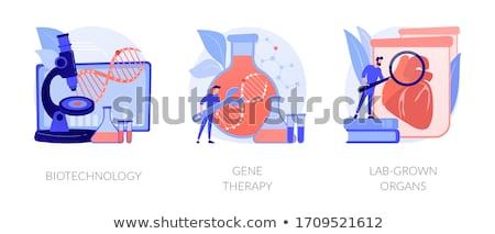 Gen engineering vector metafoor genetica laboratorium Stockfoto © RAStudio