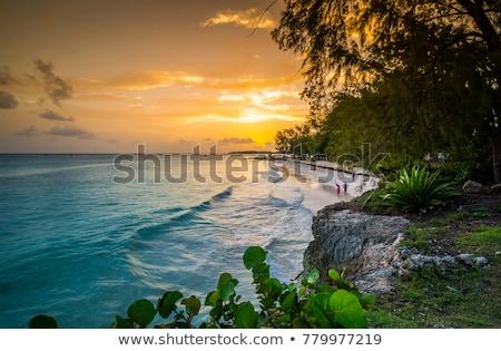 Strand Barbados caribbean wolken zee Stockfoto © phbcz