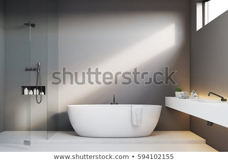 bathroom room chromed shower stock photo © ruslanomega