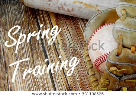Primavera formazione giocatore di baseball swing estate Foto d'archivio © stevemc