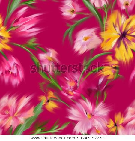 虹 · 蓮 · 花弁 · 描いた · 明るい · 火の粉 - ストックフォト © pathakdesigner