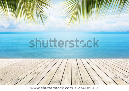 Docked in the Tropics