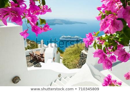 santorini scenery Stock photo © OleksandrO