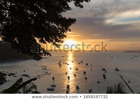 Merveilleux mer coucher du soleil palmier silhouettes pêche Photo stock © tannjuska
