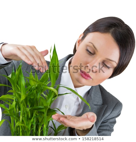Adult business woman taking care about her plant. Safety and con Stock photo © HASLOO