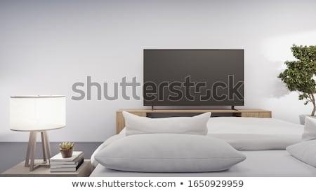Hálószoba tv virág család ház televízió Stock fotó © Paha_L