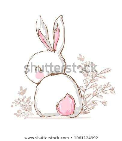 coelhinho · da · páscoa · flores · da · primavera · ilustração · joaninha · isolado · branco - foto stock © elmiko