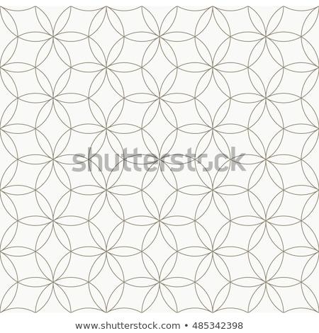 vektör · siyah · beyaz · circles · model - stok fotoğraf © creative_stock