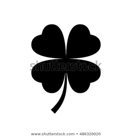 négy · levél · lóhere · illusztráció · zöld · fehér - stock fotó © elenapro