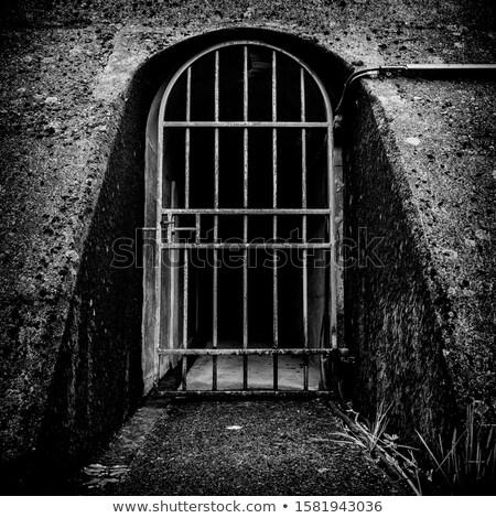 piccolo · bloccato · cancello · muro · di · mattoni · legno · metal - foto d'archivio © sarahdoow
