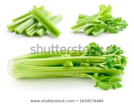 Celery Stock photo © joker