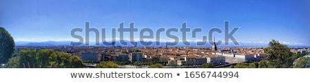 turin panorama stock photo © claudiodivizia