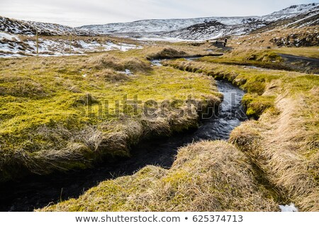 View over Thingvellir National park Stock photo © elxeneize