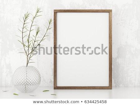 Estuco Foto marcos aislado blanco resumen Foto stock © scenery1