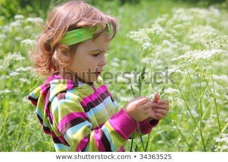 little girl on glade with grass-blade in hand Stock photo © Paha_L