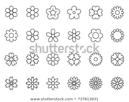 花柄 · ファブリック · 黒 · パターン · ポスター - ストックフォト © rastudio