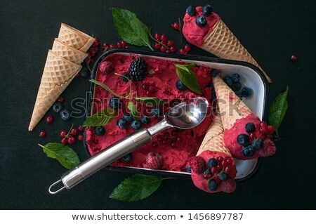 Spoonful of Frozen Blackberries Stock photo © StephanieFrey