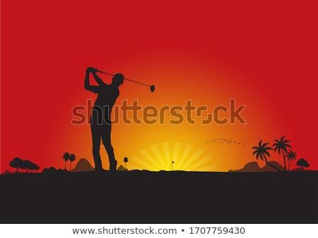 Jogador de golfe pôr do sol ilustração homem verde clube Foto stock © adrenalina