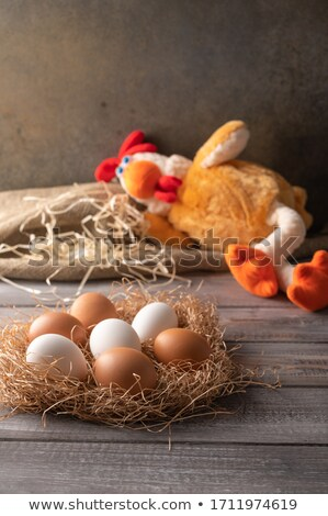 Hen's Nest - Vertical Orientation Stock photo © frannyanne