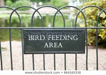Bird feeding area, St James's Park, London Stock photo © IS2