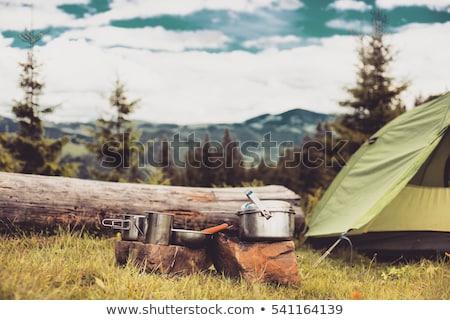 kilátás · bent · sátor · ki · erdő · tavasz - stock fotó © kotenko