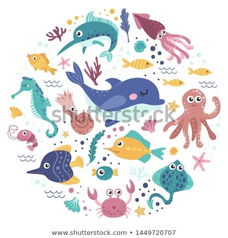 frame design with sea animals stock photo © colematt