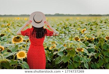 улыбаясь брюнетка женщину платье позируют подсолнухи Сток-фото © deandrobot