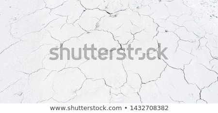 Earth Day text on dry cracked soil. Stock photo © szefei