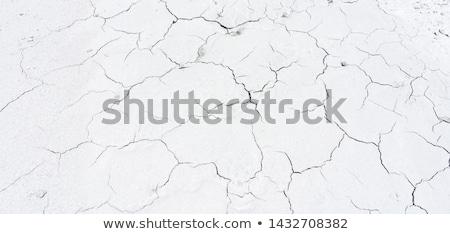 earth day text on dry cracked soil stock photo © szefei