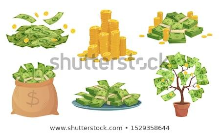 bancaires · Finance · économie · investissement · paiement · ligne - photo stock © robuart