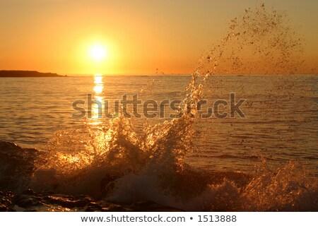 Świt wyspa piękna nowego Anglii morza Zdjęcia stock © craig