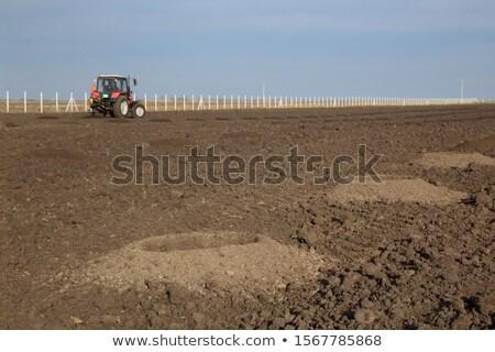Drilling holes in field, preparing for trees planting Stock photo © simazoran