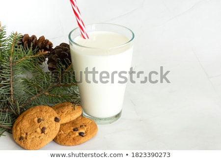 close up of oatmeal cookies and glass of milk Stock photo © dolgachov