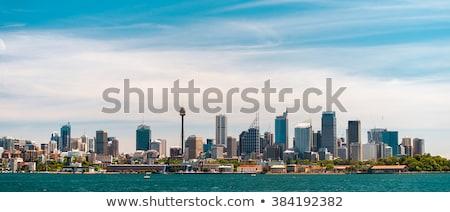 Сидней Blue Sky Небоскребы бизнеса дерево Сток-фото © ShustrikS