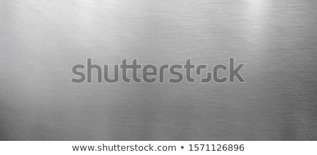 Metal brilhante luz cinza prato vetor Foto stock © fixer00